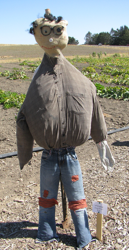 First Annual Scarecrow Contest